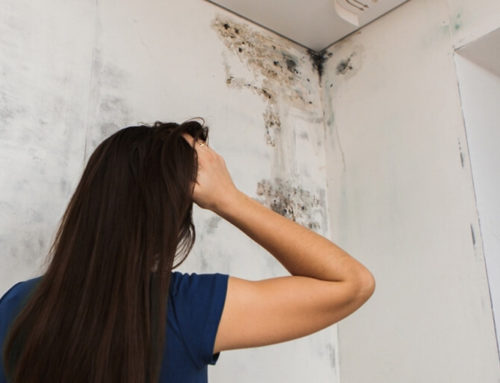 Πρόβλημα υγρασίας στους τοίχους: Πώς να το αντιμετωπίσετε!