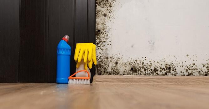 καθαριστικά για καθαρισμός υγρασίας