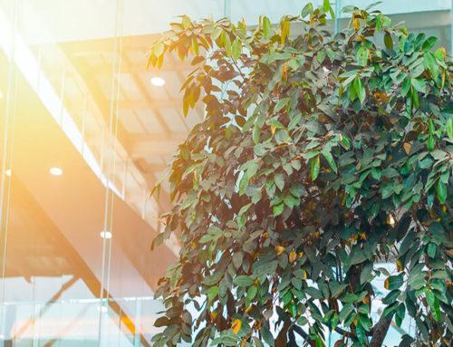 Ενεργειακή αναβάθμιση κτιρίων σχεδιάζει το ΥΠΕΝ με νέες νομοθετικές ρυθμίσεις.